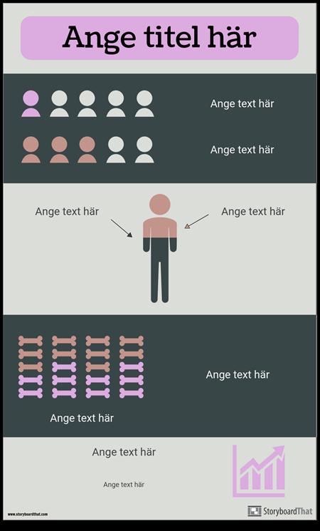 Statistik Infographic