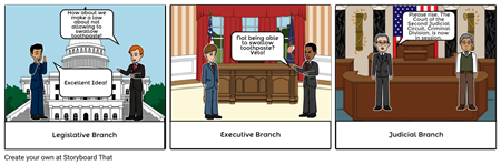 The Executive, Legislative and Judicial Branches